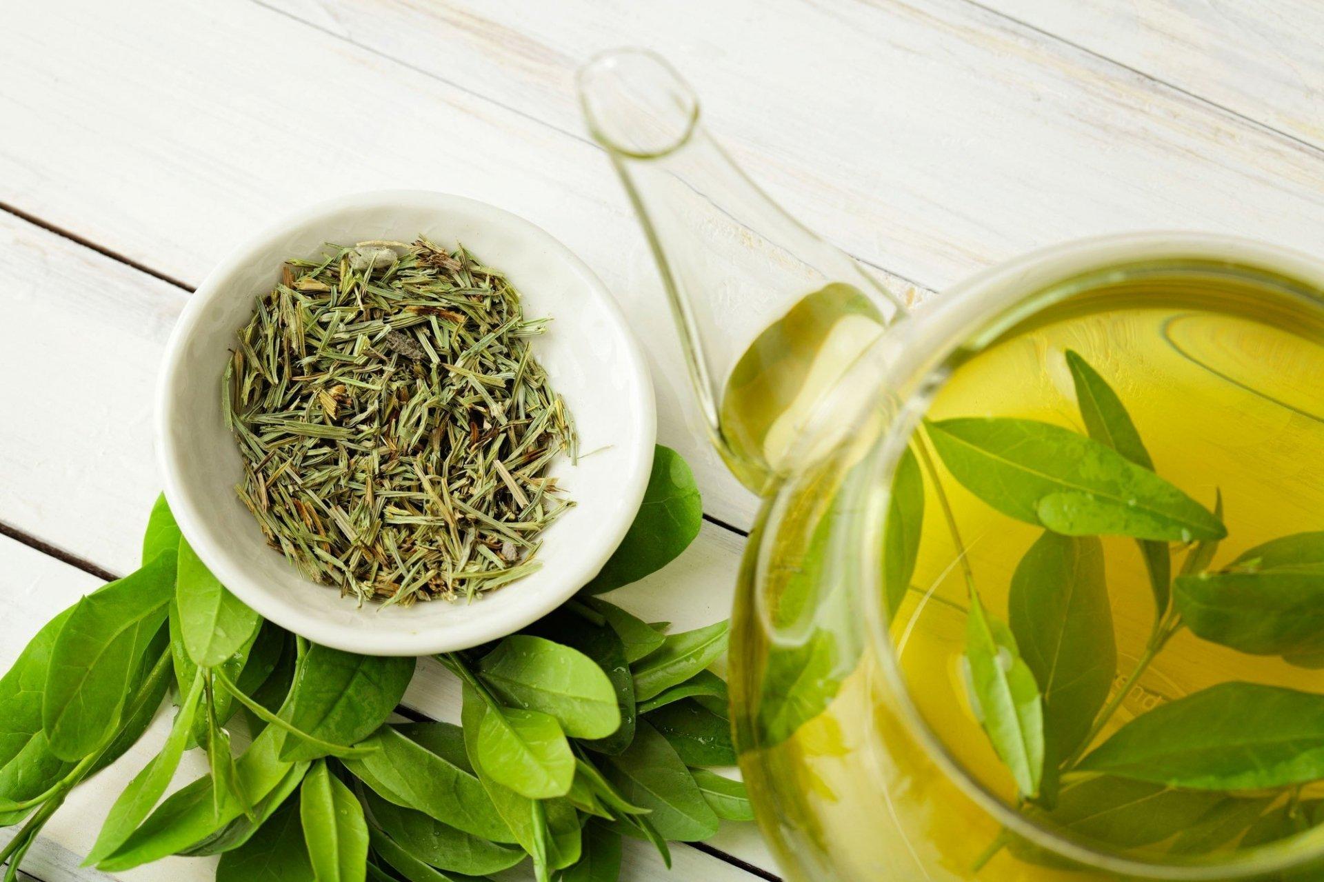 Bị viêm lợi nên sử dụng trà xanh hàng ngày